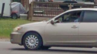Vehicle 1.JPEG