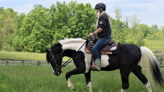 KHS-riding-assessment-2.jpg