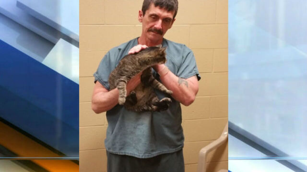 Boone County Jail uses cats to help inmates