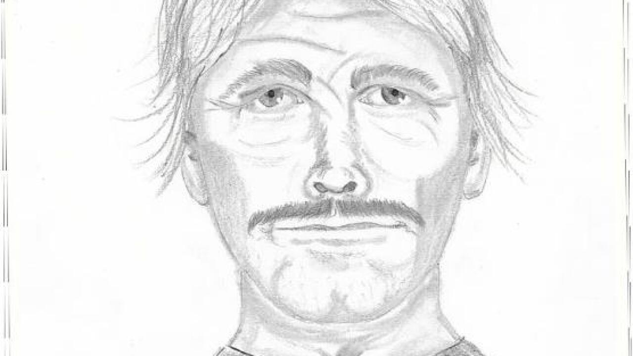 Sketch of movie theater rape suspect released