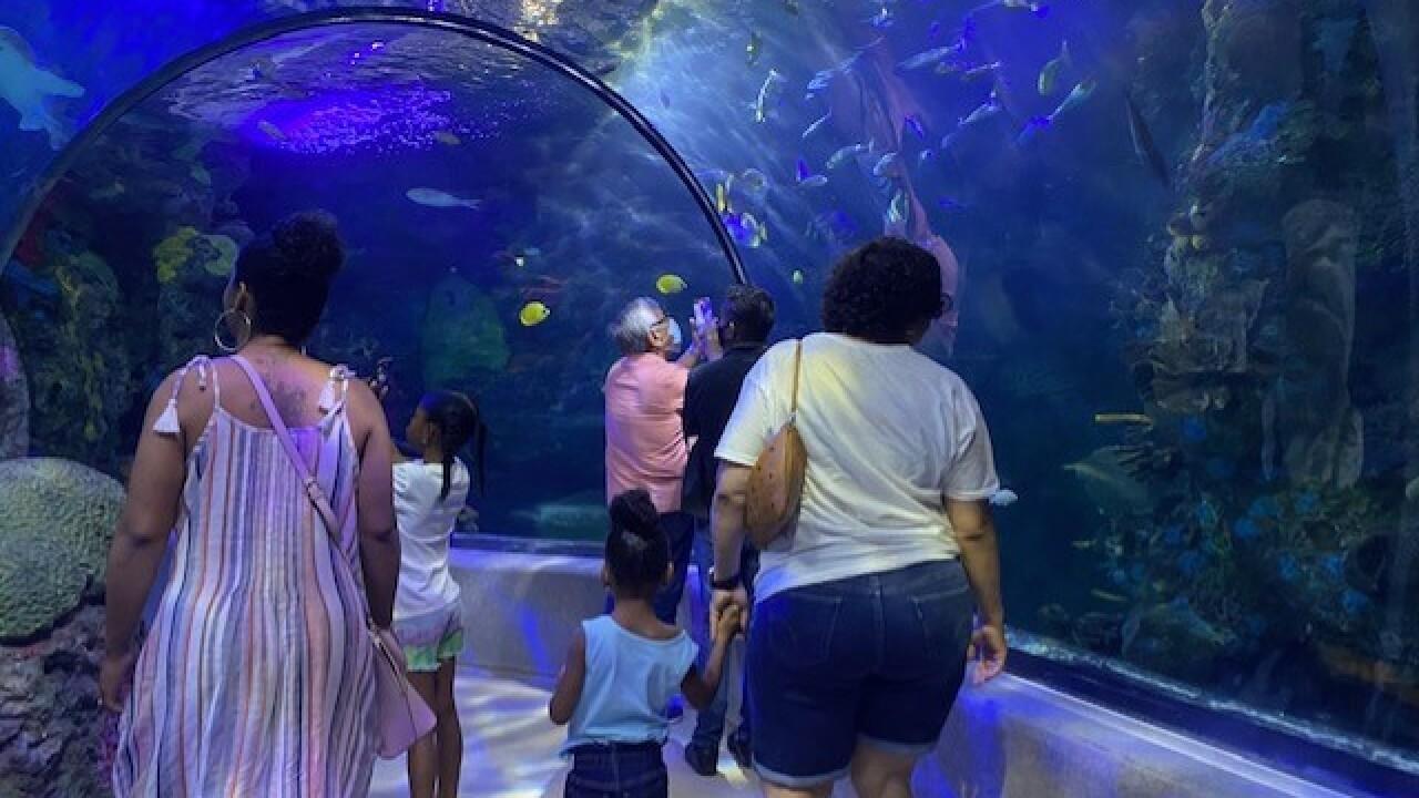 virginia aquarium.jpg