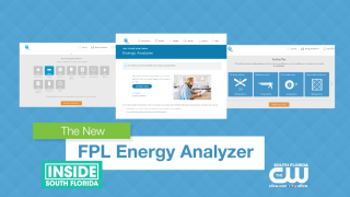 FPL Energy Analyzer Tool