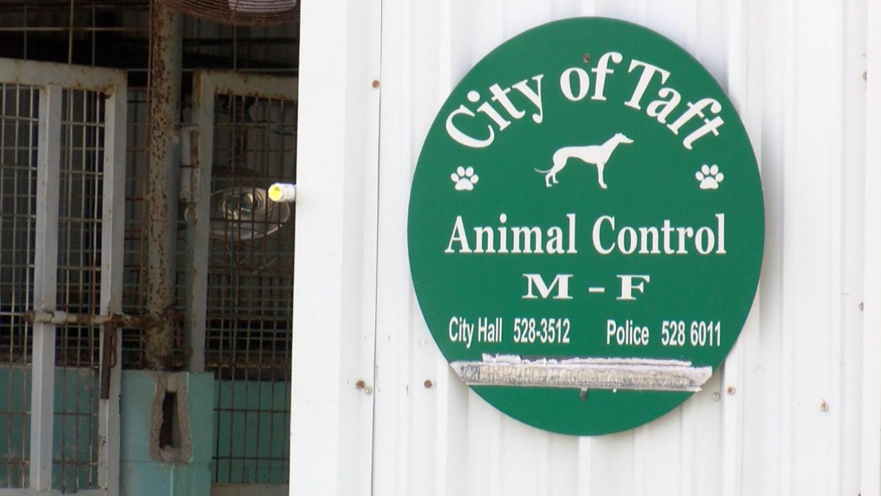 Taft Animal Control.png