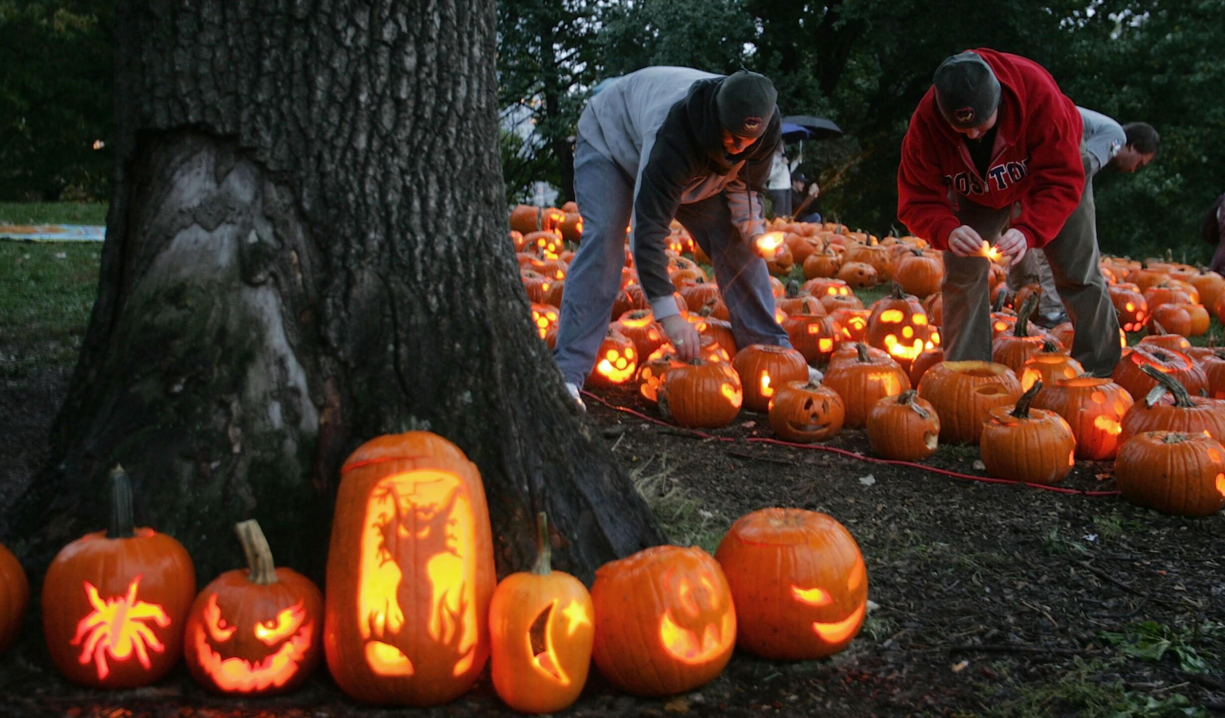 Boston Holds Pumpkin Festival