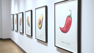 The Art of Food Exhibit at the University of Arizona Museum of Art