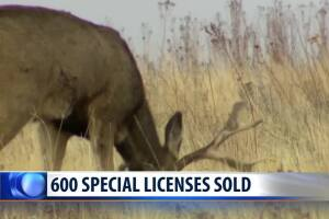 Special Libby CWD hunting licenses sell out quickly