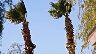 Las Vegas under wind advisory until Monday