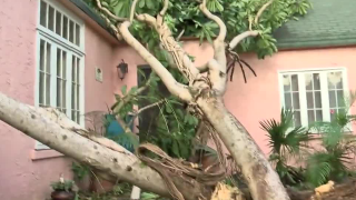 Hurricane Irma storm photos
