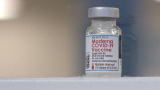Moderna Vaccine Vial.png
