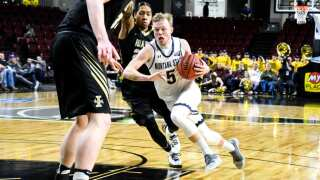 Montana State Bobcat Harald Frey to represent Norway national basketball team