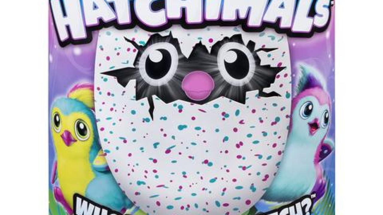 Is the Hatchimals toy worth the cost and effort?