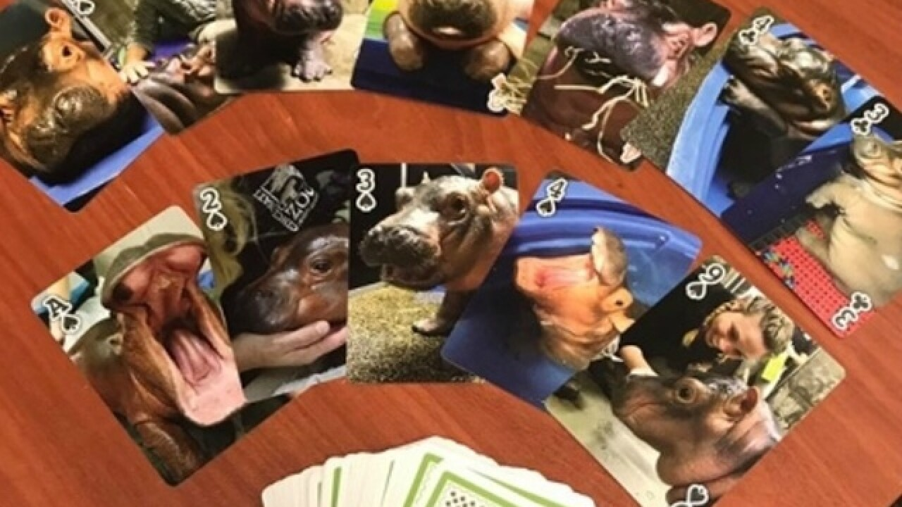 Kroger selling essential Fiona playing cards