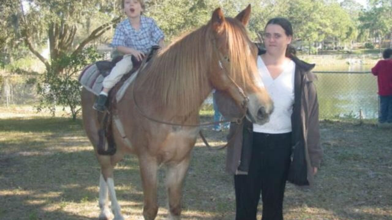 Help needed for horse after Lutz family's murder
