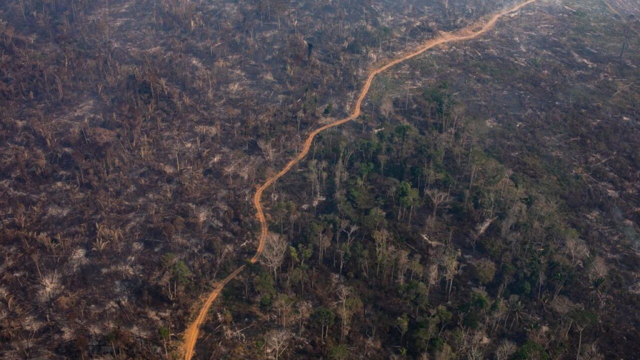 At G7 summit, world leaders pledge more than $20 million to aid Amazon rainforest