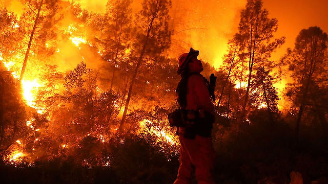 Nevada class prepares participants to investigate wildfires