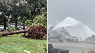 Isaias storm damage.jpg