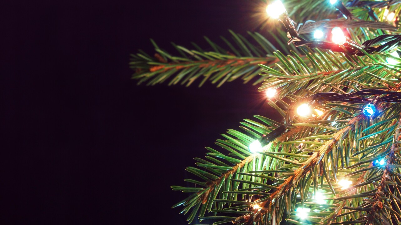 How to 'treecycle' natural Christmas trees in Hampton Roads