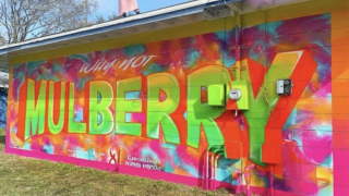 Why-Not-Mulberry-mural.png