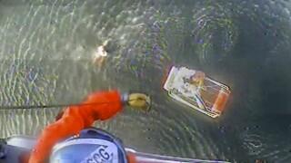 David Lesh Plane Crash.jpg