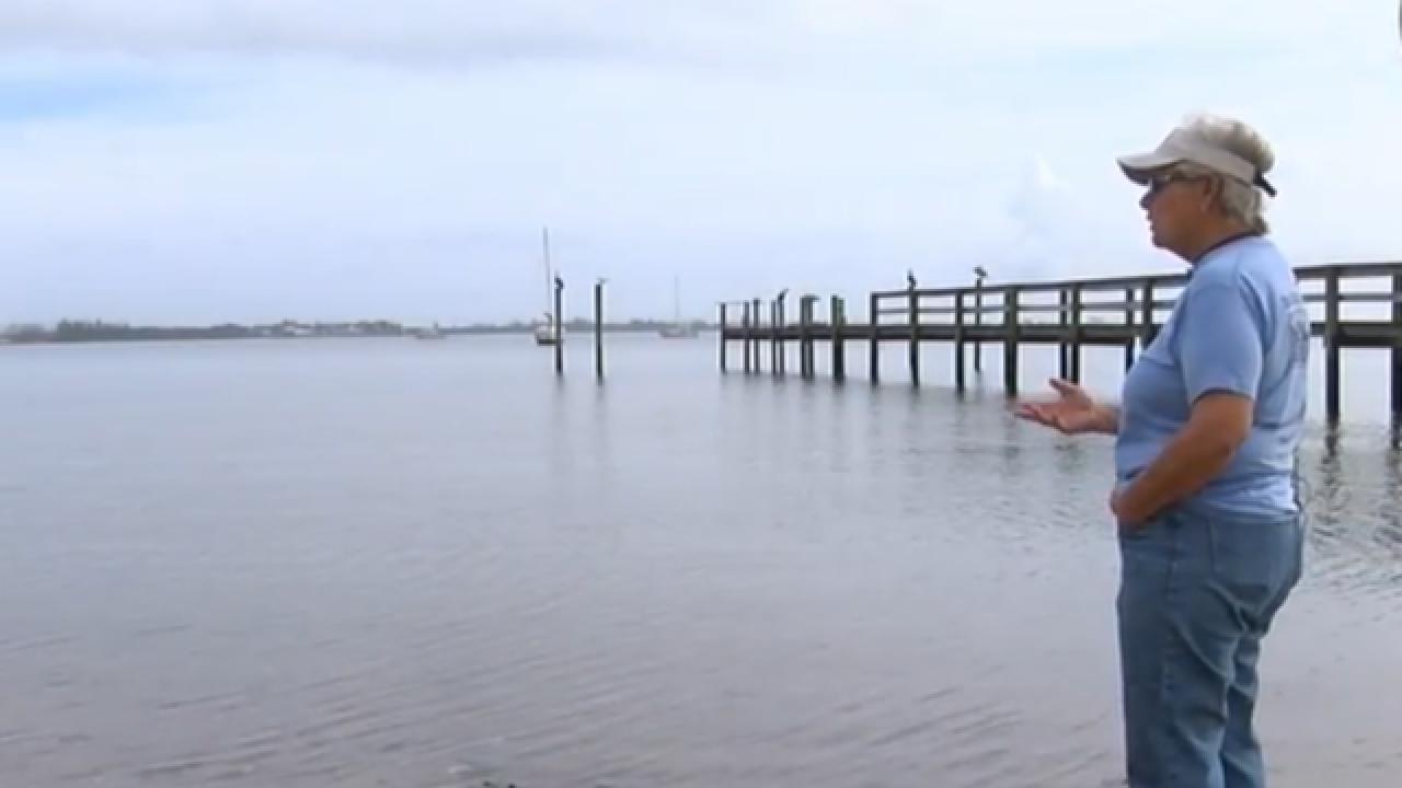 Study finds septic tanks, algae blooms link