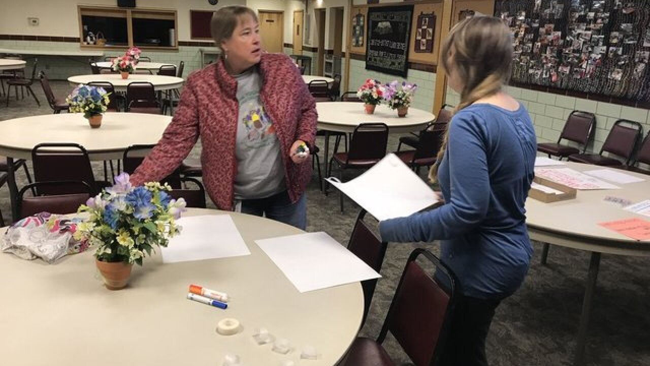 Volunteers plan search for Camisha Hollis