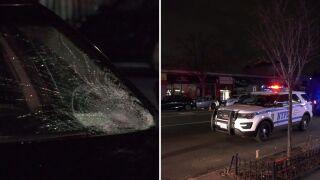 woman struck bayside.jpg