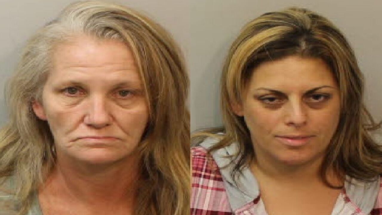 Seatbelt violation leads to Tallahassee drug bust, two arrests