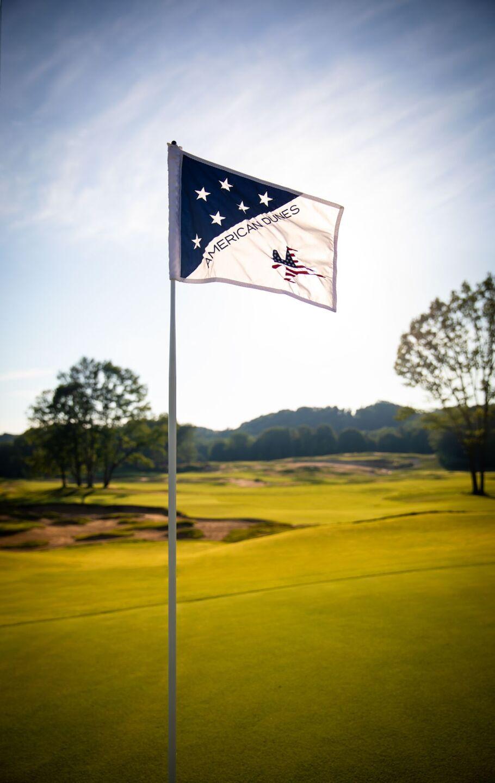 American-Dunes-Flag-Nile-Young.jpg
