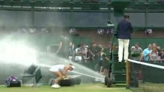 Wimbledon Sprinkler.jpg