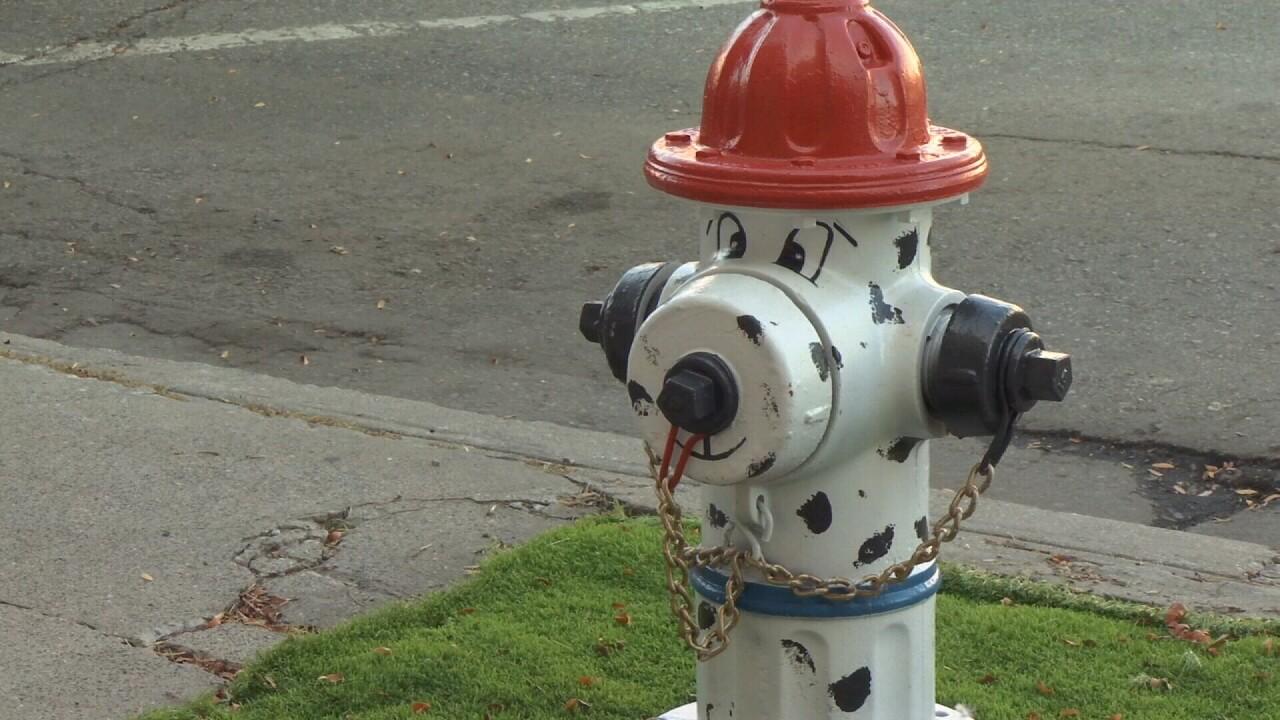 Downtown Billings Alliance Dog Fire hydrant.jpg