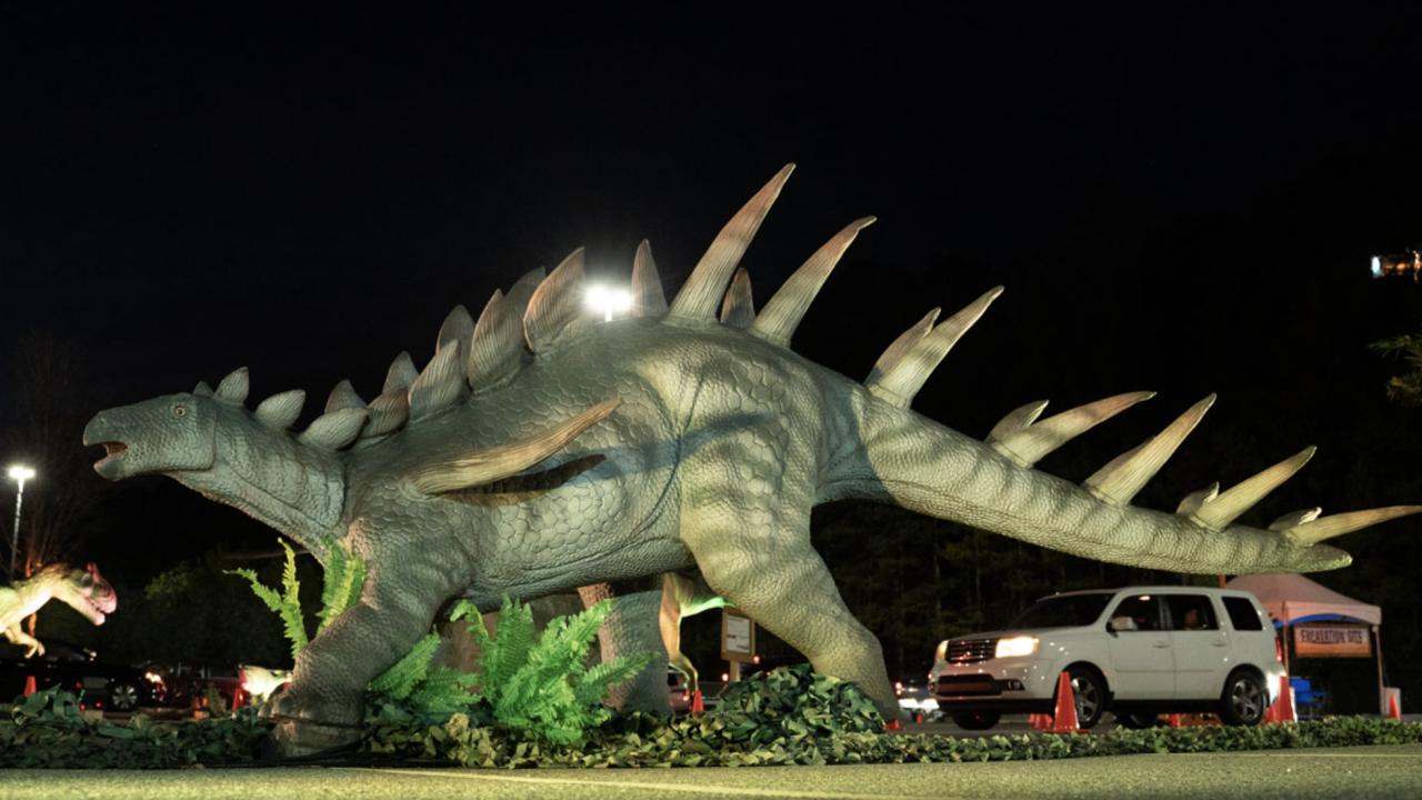 Dino Safari Drive Thru