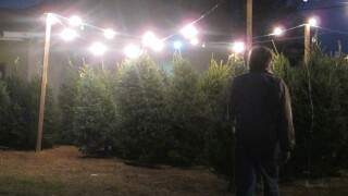 Lowe's and NFL players team to provide Christmas trees for families, organizations