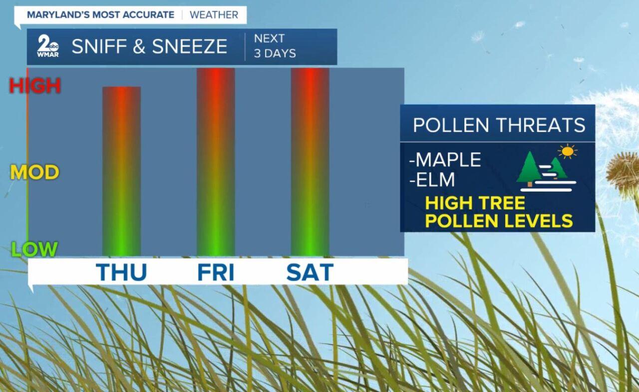 Pollen Outlook