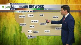 Montana Ag Network Weather: June 7th
