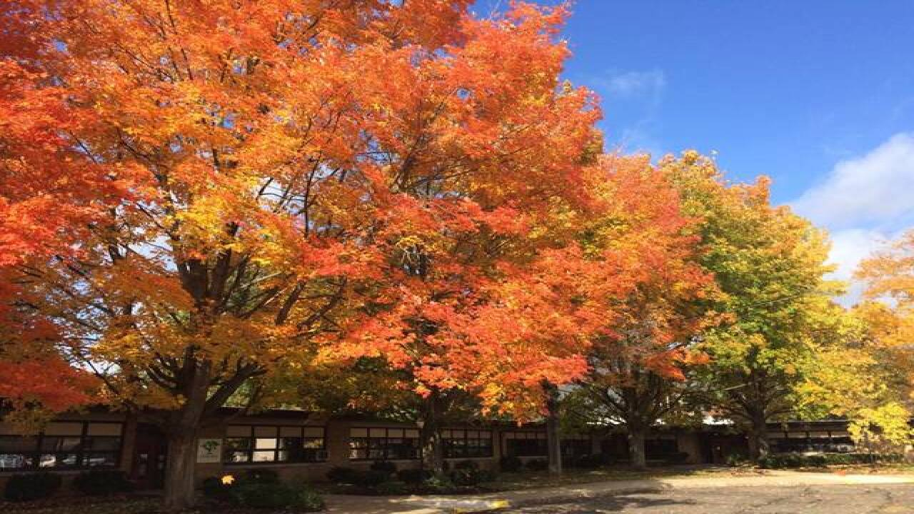 Fall Foliage Gallery   Facebook Fan Submissions