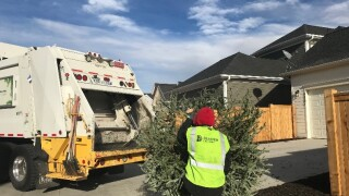 Treecycle_Recycle Christmas Trees & Old Holiday Lights 2020