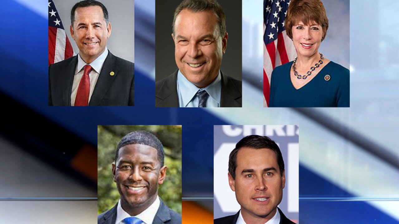Democratic candidates for governor meet in town hall