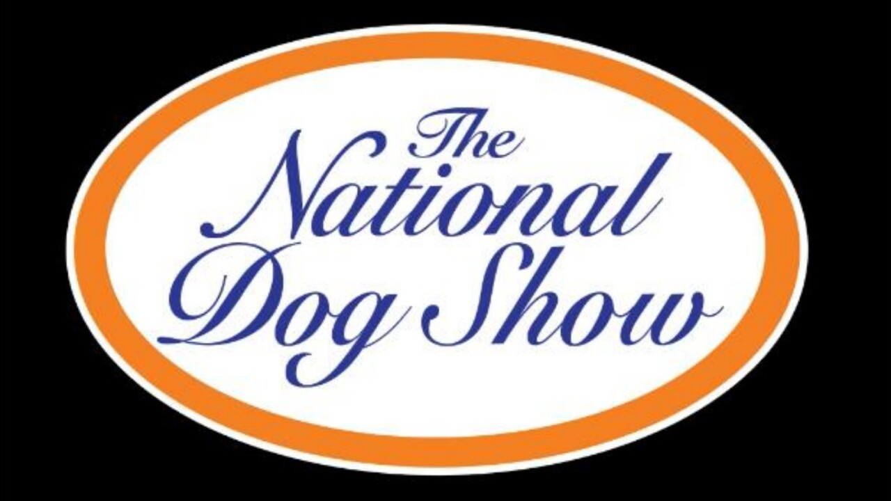 national dog show 2020 - photo #28