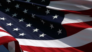 Veterans Day: Events honoring our armed services