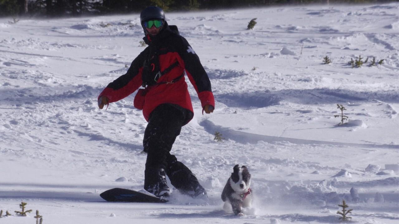 Bandit Loveland Ski Patrol.jpg
