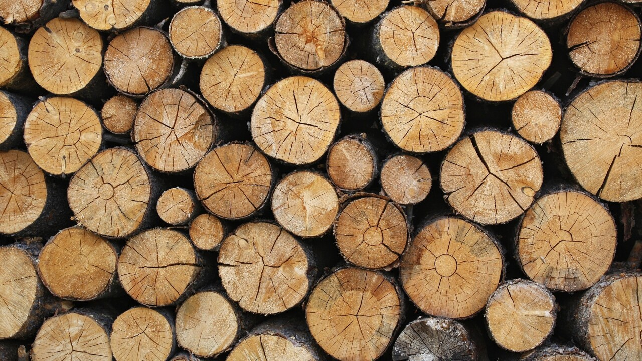 logs timber lumber