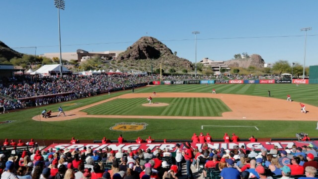 Major League Baseball pushing to ban betting on spring training
