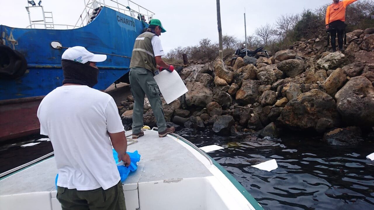 600 gallons of oil spilled in Galapagos after boat capsizes