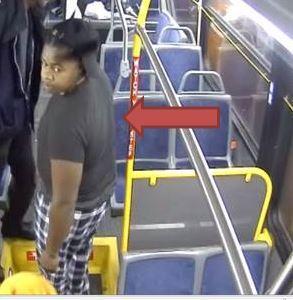 Bus Attack 2.jpg