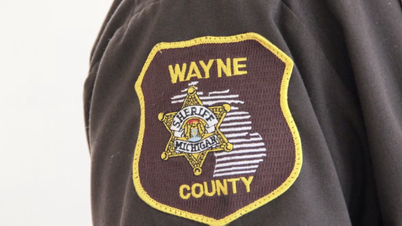 Wayne County sheriff patch