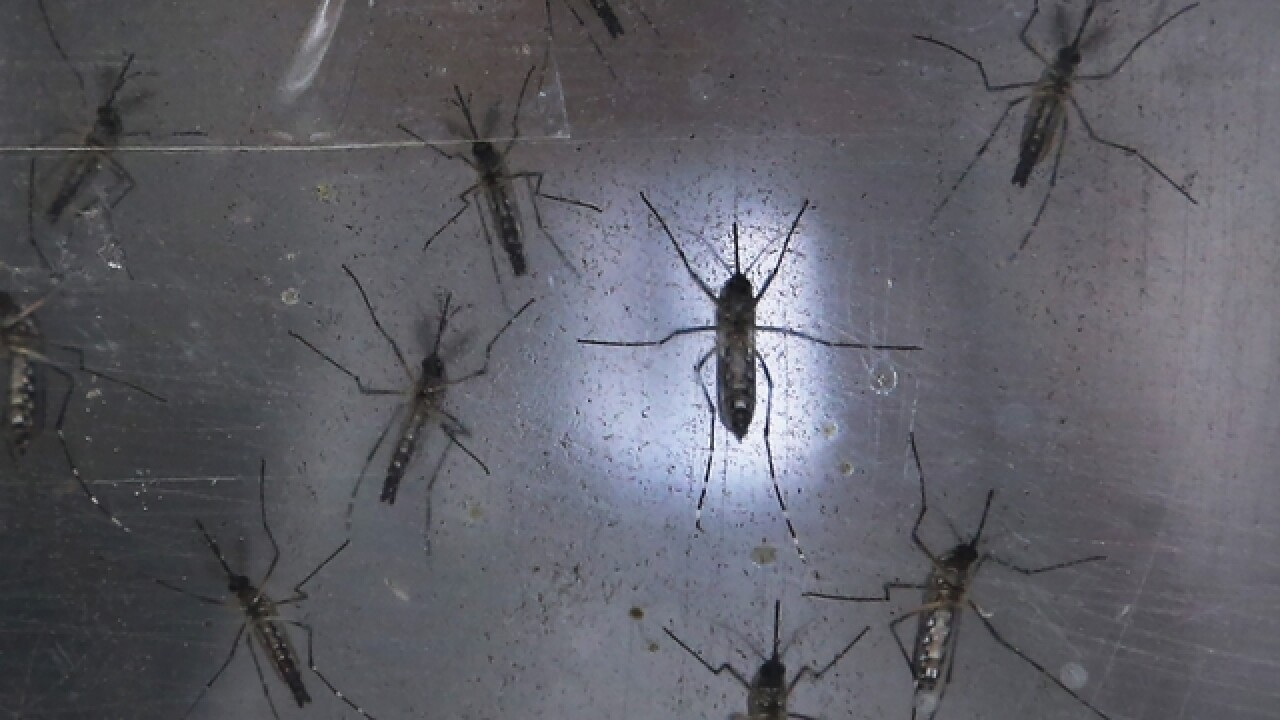 Zika virus causes MLB to relocate games