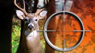 Deer hunting file graphic