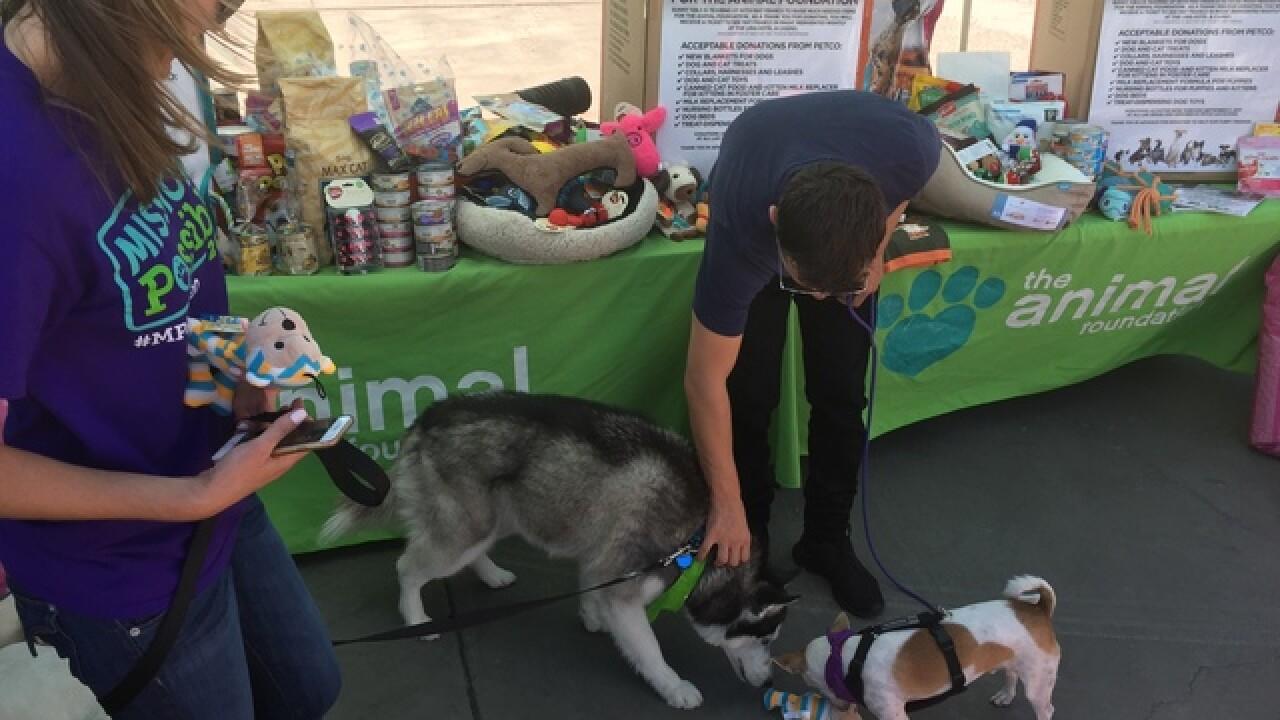 Mat Franco donates to Animal Foundation