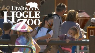 Hogle Zoo Masks.jpg