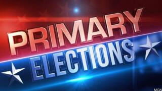 primary+elections.jpg